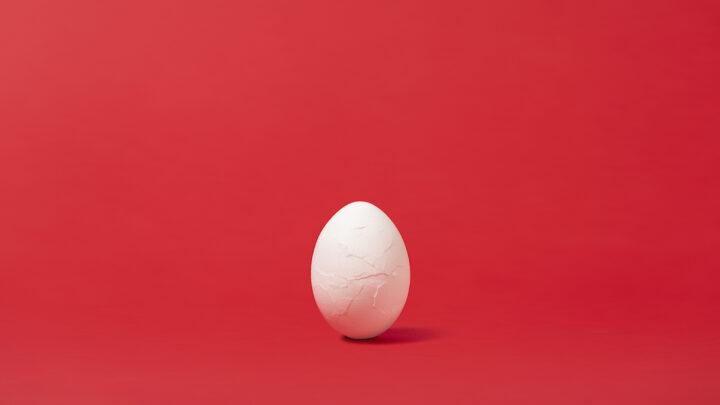 Fotograma huevo